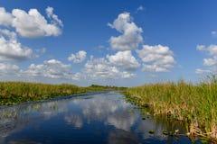 Национальный парк болотистых низменностей - Флорида Стоковое фото RF