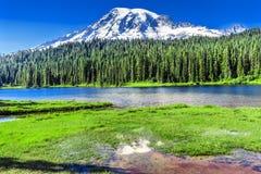 Национальный парк Вашингтон Mount Rainier рая озера отражени Стоковое Фото