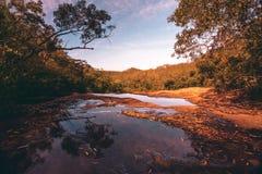 Национальный парк взгляд сверху скалы королевский стоковое изображение rf