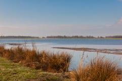 национальный парк голландеца de biesbosch Стоковое Фото