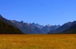 национальный парк горы ландшафта fiordland Стоковое Изображение RF