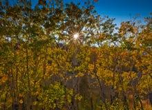национальный парк горы осин утесистый Стоковое фото RF
