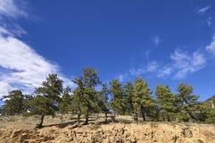 национальный парк горы утесистый Стоковая Фотография