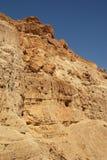 национальный парк Давида nahal стоковое фото rf