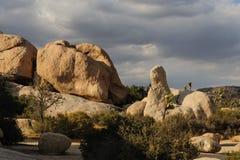 Национальный парк дерева Иешуа в свете вечера Стоковые Изображения RF