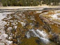 Национальный парк Йеллоустона, Вайоминг, Соединенные Штаты Стоковое Изображение