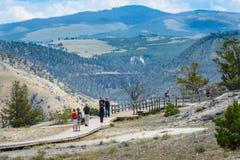 НАЦИОНАЛЬНЫЙ ПАРК ЙЕЛЛОУСТОНА, ВАЙОМИНГ, США - 17-ОЕ ИЮЛЯ 2017: Туристы на променаде на террасах Mammoth Hot Springs Парк Йеллоус стоковое изображение rf