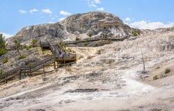 НАЦИОНАЛЬНЫЙ ПАРК ЙЕЛЛОУСТОНА, ВАЙОМИНГ, США - 17-ОЕ ИЮЛЯ 2017: Туристы на променаде на террасах Mammoth Hot Springs Парк Йеллоус стоковое фото rf