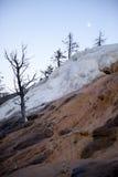 Национальный парк Йеллоустона Стоковое Фото