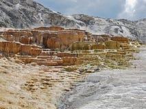 Национальный парк Йеллоустона, Mammoth Hot Springs стоковое изображение
