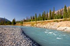 национальный парк Канады kootenay Стоковое Изображение RF