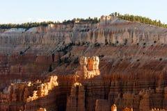 Национальный парк каньона Bryce, один из самых красивых парков в мире стоковые фотографии rf