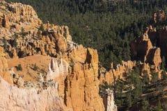 Национальный парк каньона Bryce, один из самых красивых парков в мире стоковые изображения rf