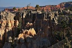 Национальный парк каньона Bryce, один из самых красивых парков в мире стоковое фото