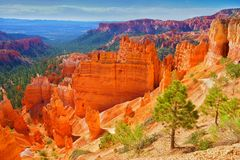 Национальный парк каньона Bryce, Юта, Соединенные Штаты Стоковые Фото