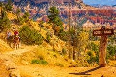 Национальный парк каньона Bryce, Юта США - след лошади 27-ое июля 2016, Соединенные Штаты Стоковые Изображения RF