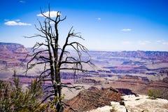 Национальный парк каньона Bryce, Юта, США Стоковое Изображение RF