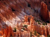 национальный парк каньона bryce Стоковые Фотографии RF