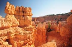 национальный парк каньона bryce Стоковые Изображения RF