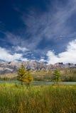 национальный парк ландшафта яшмы alberta канадский Стоковое Фото