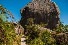 Национальный парк Ла Gran Piedra, большого утеса в горной цепи около Сантьяго-де-Куба, Кубе Сьерры Maestra стоковые изображения rf