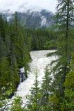 Национальный парк ледника Стоковые Изображения