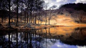 национальный парк озера заречья Стоковое Изображение