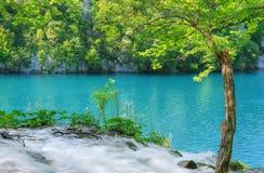 Национальный парк озер Plitvice стоковые фото
