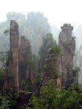 национальный парк пущи Стоковая Фотография RF