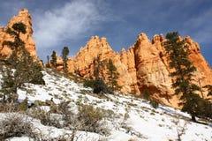 национальный парк США Юта каньона bryce Стоковое Фото