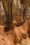 национальный парк Юта каньона bryce стоковое фото rf