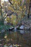 Национальный парк Юта Сион, Соединенные Штаты стоковые изображения rf