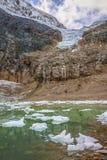 национальный парк яшмы ледника ангела альбатроса Канада стоковая фотография rf