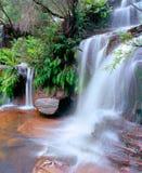 национальный парк Стоковая Фотография