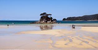 национальный парк abel tasman Стоковые Изображения RF