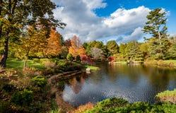 Национальный парк Acadia в осени стоковая фотография rf