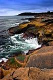 национальный парк acadia стоковые изображения