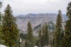 Национальный парк Ayubia, Исламабад, Пакистан Стоковые Изображения RF