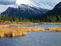 национальный парк banff Стоковая Фотография