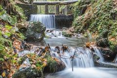 Национальный парк Bolu Yedigoller стоковое фото rf