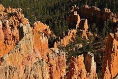 Национальный парк Brice стоковые фото