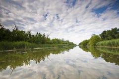 национальный парк carska bara Стоковое Изображение