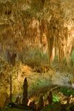 национальный парк caverns carlsbad Стоковые Фотографии RF