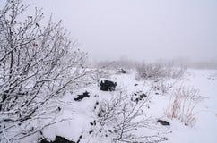 Национальный парк Daisetsuzan Стоковая Фотография RF