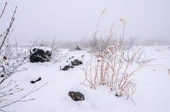 Национальный парк Daisetsuzan Стоковое фото RF
