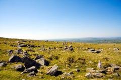 национальный парк dartmoor Стоковые Фото