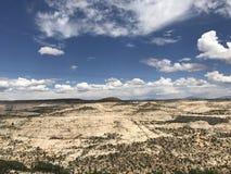 Национальный парк Dixie Стоковые Изображения RF