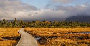 Национальный парк Gros Morne в Ньюфаундленде, Канаде Стоковые Изображения