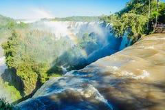 Национальный парк Iguazu стоковые изображения rf