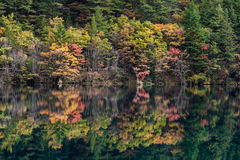 Национальный парк Jiuzhaigou Стоковое Фото
